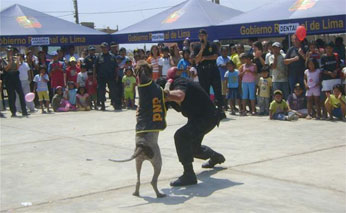 Policía canina de Huacho.