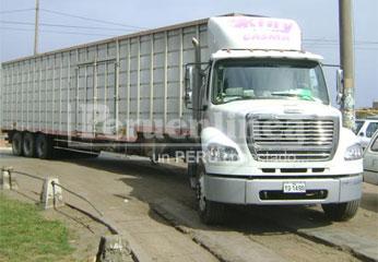 La mercadería fue trasladada hacia la unidad especializada de la PNP.