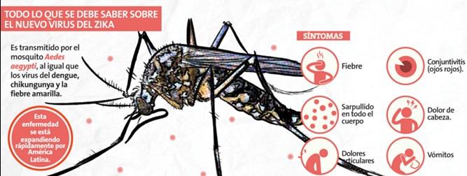 Perú en alerta por virus del zika que ya ataca a 20 países